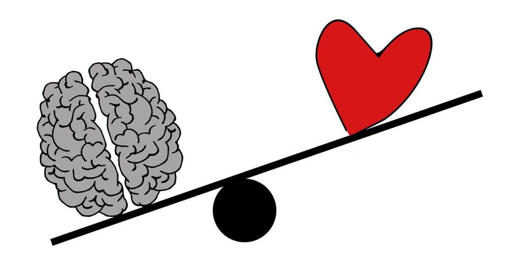 Verstand und Gefühl