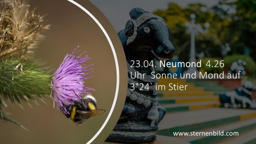 23.04. Neumond  4.26 Uhr  Sonne und Mond auf 3°24` im Stier